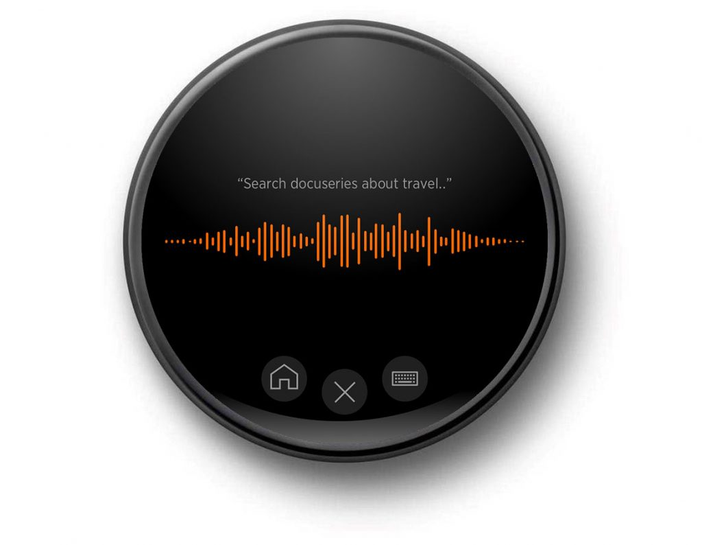 Streaming Service Voice Search